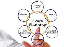 A Basic Guide to Planning Your Estate article photo